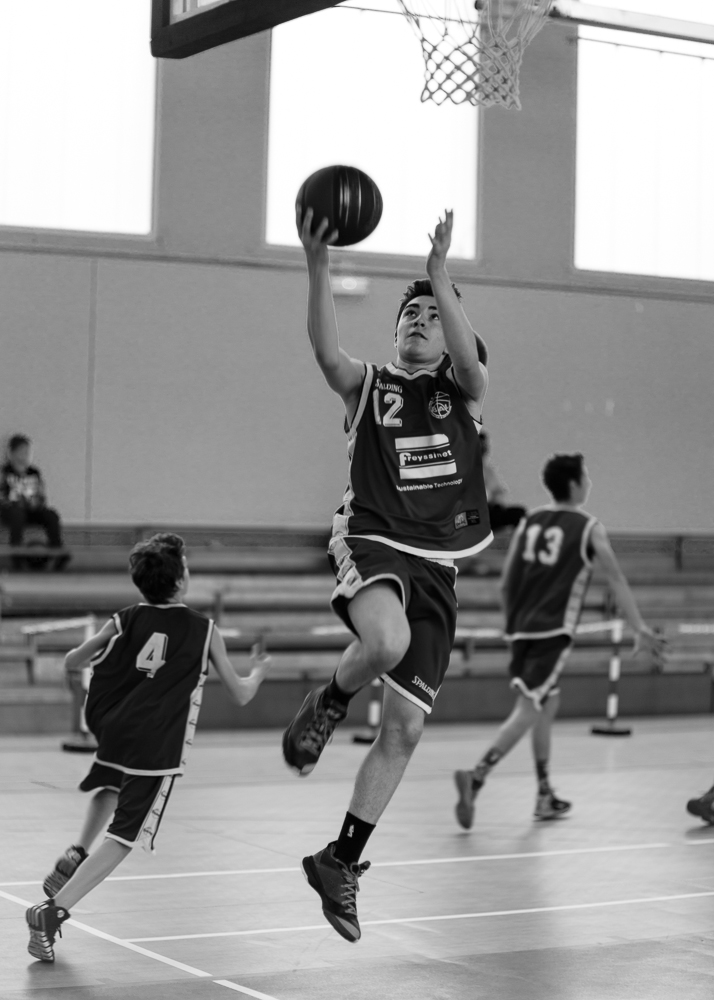 1503 Basket Noé (1)