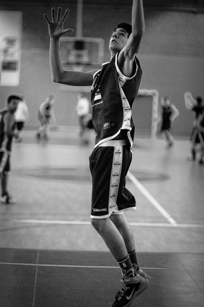 1503 Basket Noé (3)