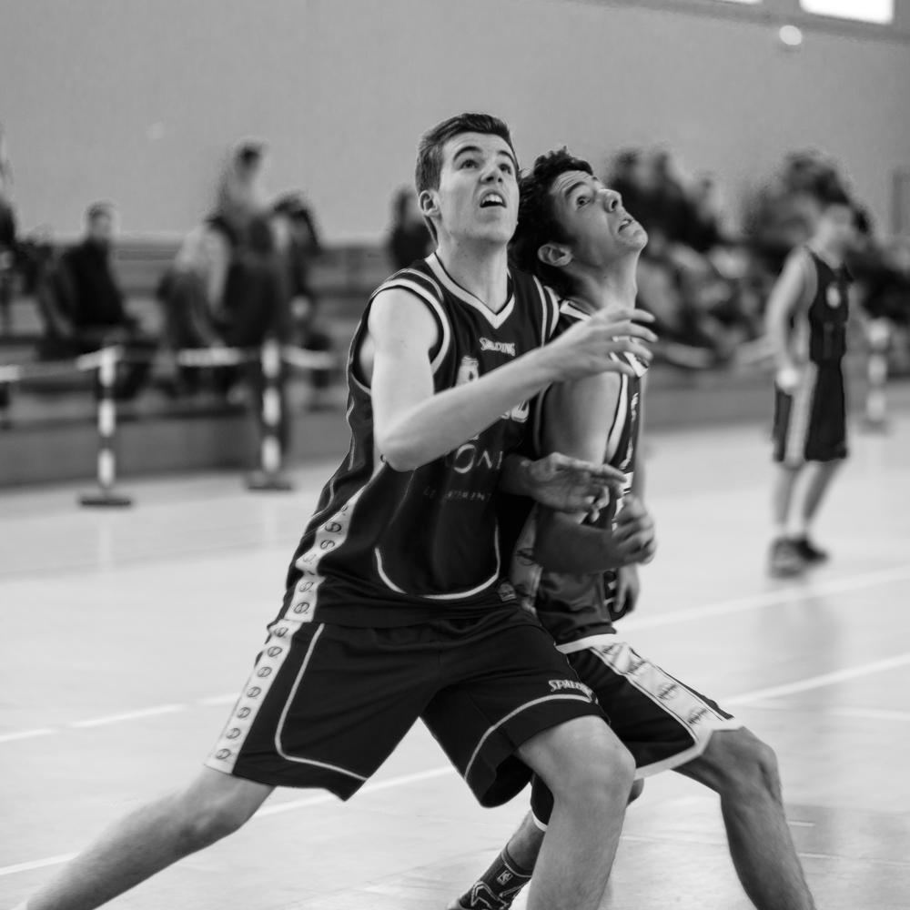 1503 Basket Noé (9)