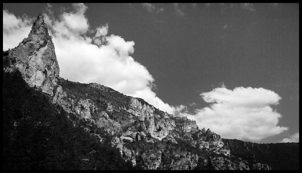 1505 Gorges du Tarn (92)