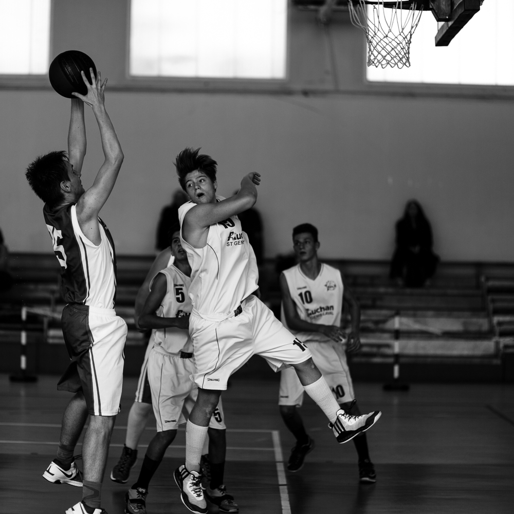 1510 Noé Basket (1)